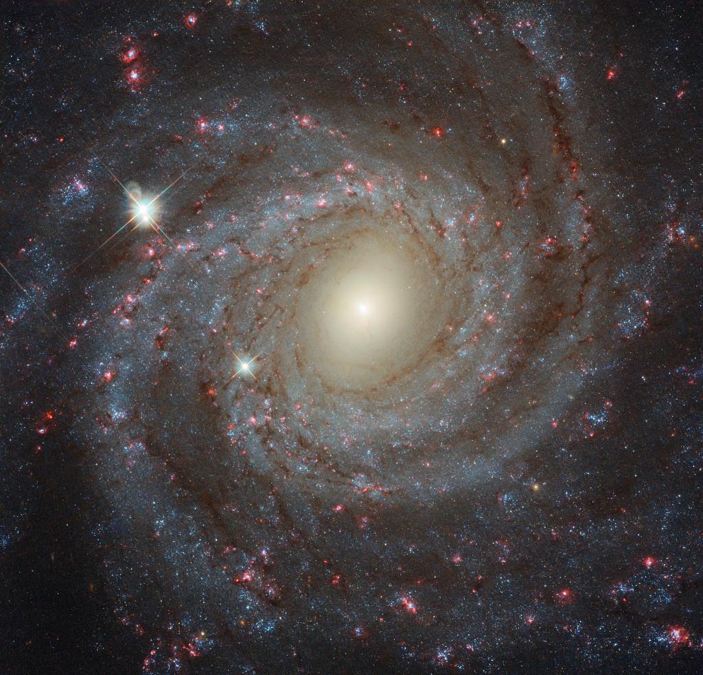 Frente a NGC 3344