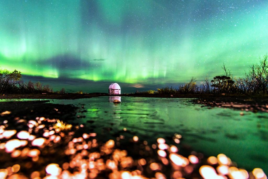 Aurora: el punto de vista de la rana