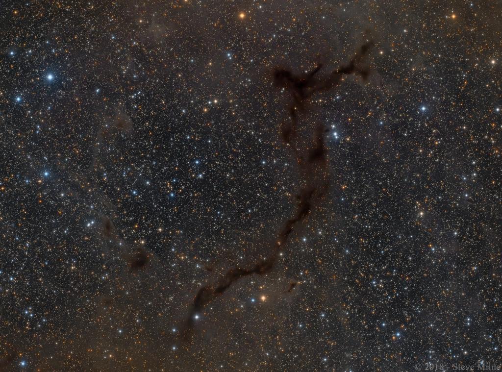 Barnard 150: Caballito de mar en Cepheus