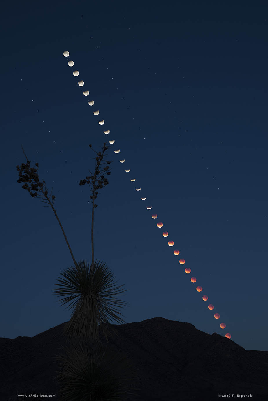 Total Lunar Eclipse at Moonset