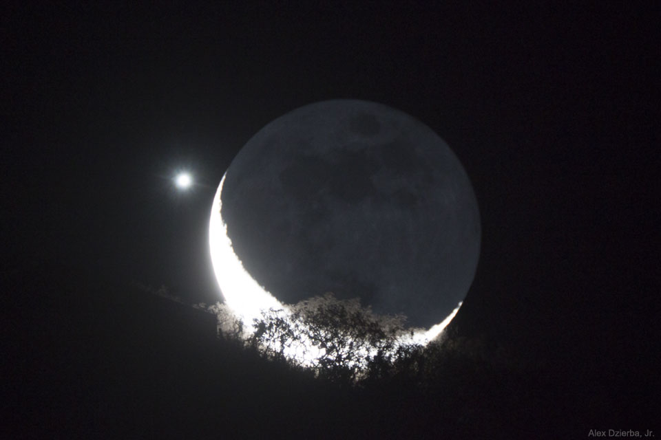 Luna y Venus junto a un árbol
