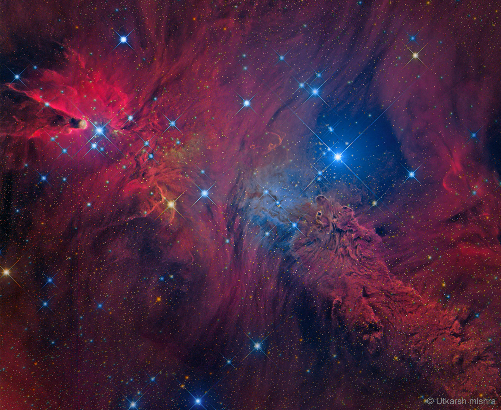 In the Vicinity of the Cone Nebula
