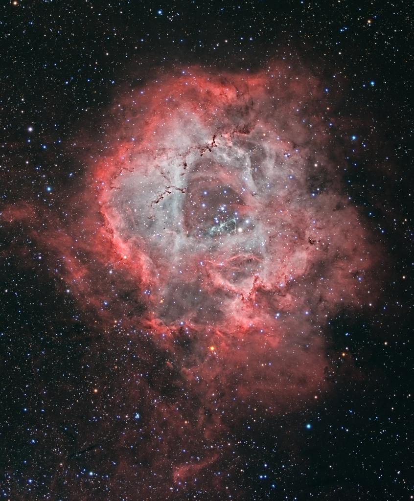 Una rosa cósmica: la nebulosa de la Roseta en Monoceros