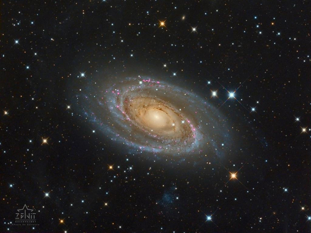 51 - APRIL - 2019. M81salvatore1024