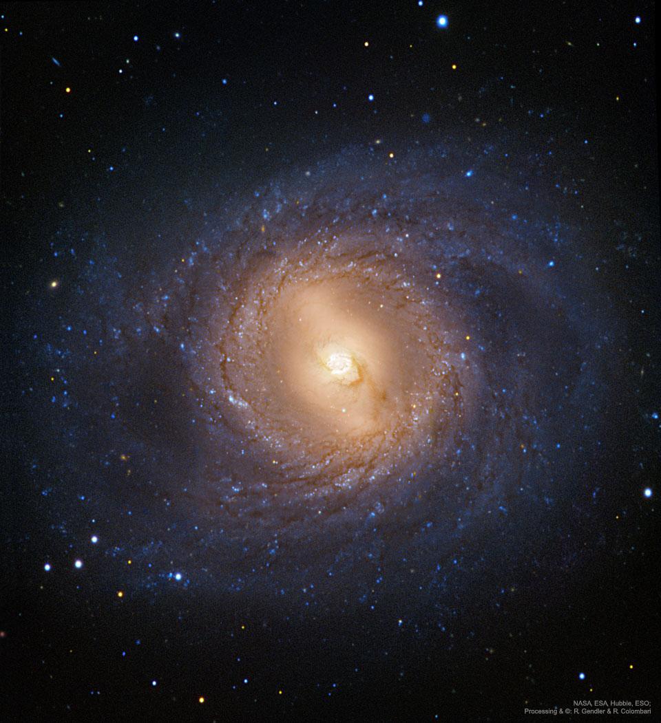 M95: Galaxia espiral con un anillo interno