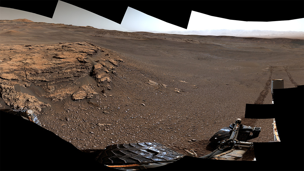 Curiosity at Teal Ridge