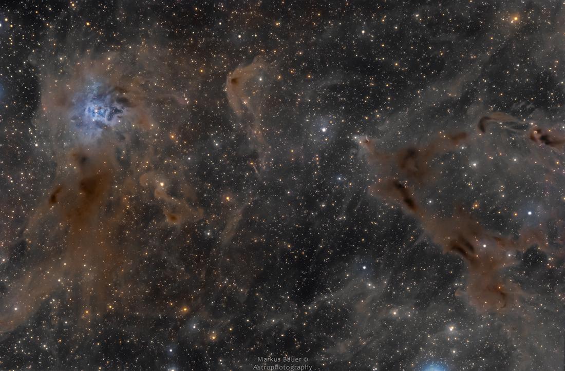 La nebulosa del iris en un campo de polvo