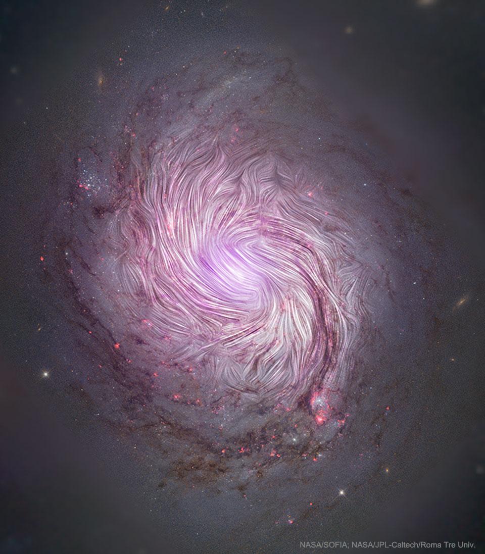M77's Magnetic Fields