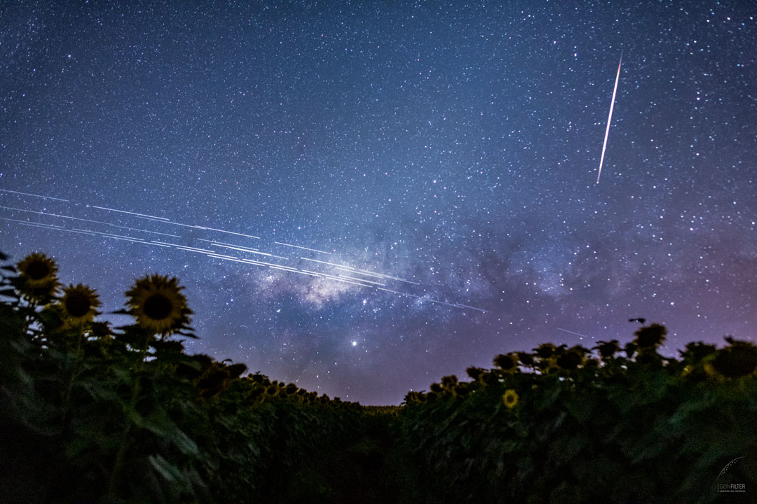 Starlink Satellite Trails over Brazil