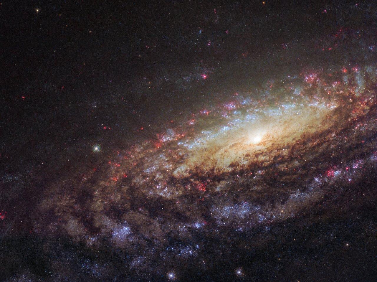 NGC 7331 Close Up