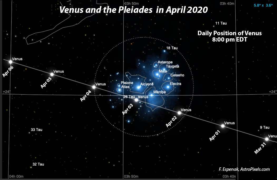 Venus and the Pleiades in April