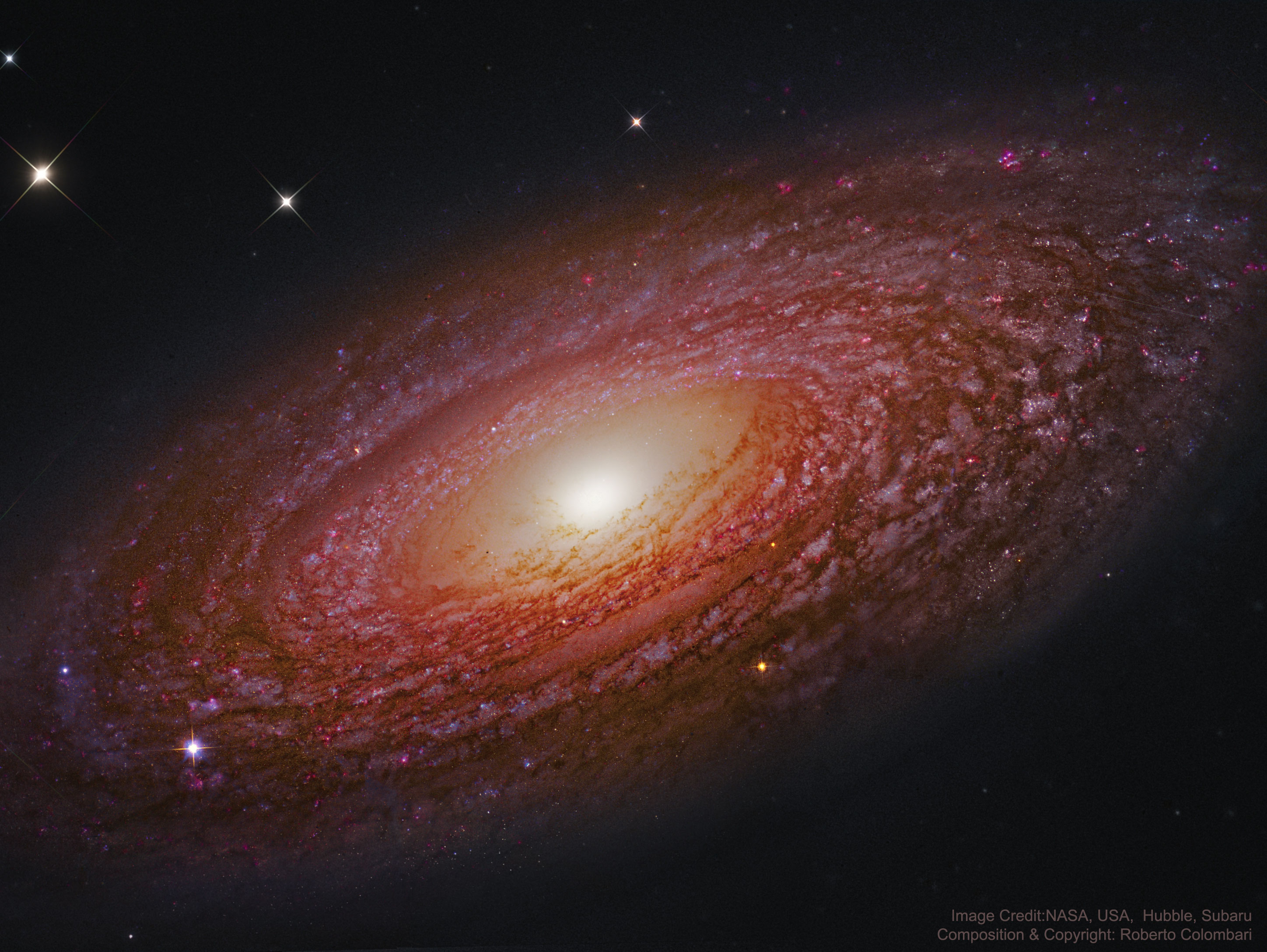 Massive Nearby Spiral Galaxy NGC 2841