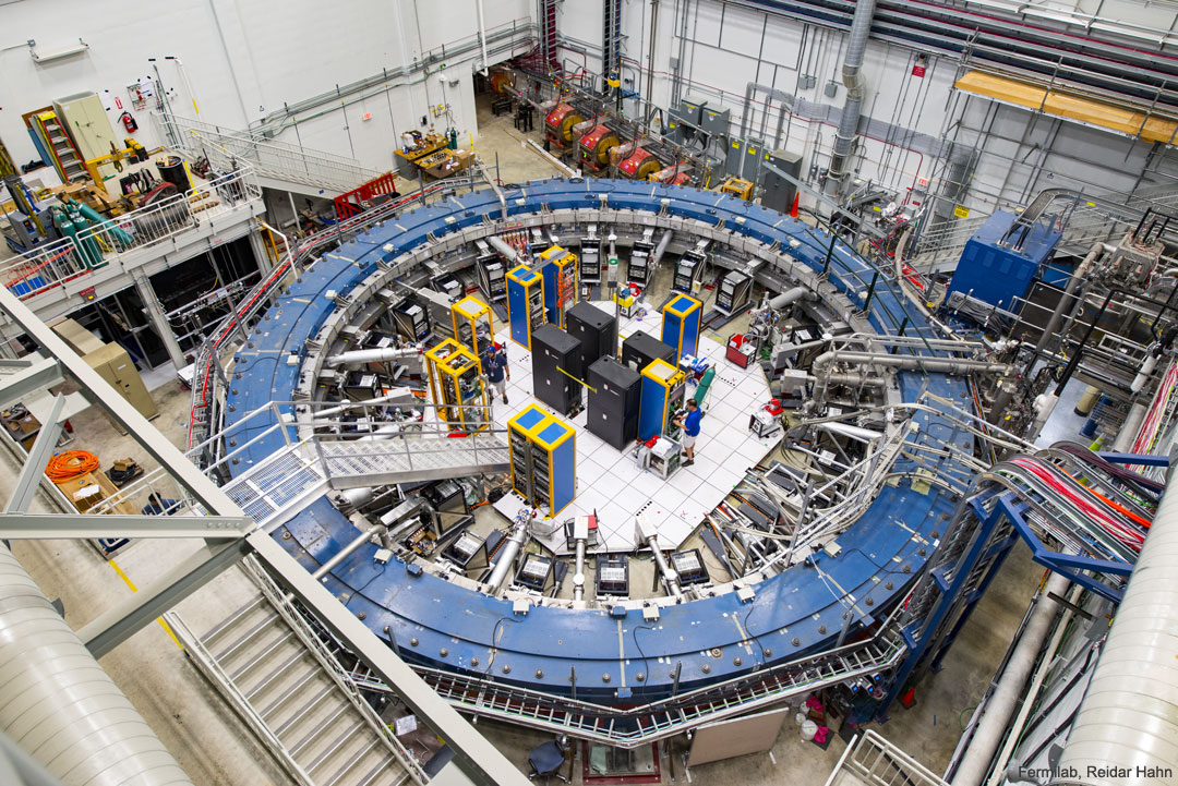 Confirmed Muon Wobble Remains Unexplained