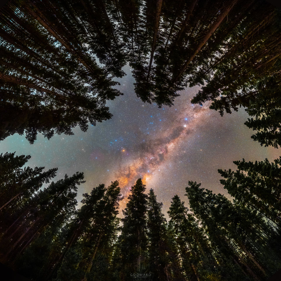 The picture shows part of the band of our Milky Way Galaxy as seen through a ring of trees.  Please see the explanation for more detailed information.