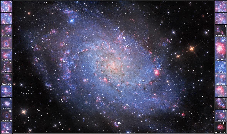 每日星空:M33的氢云