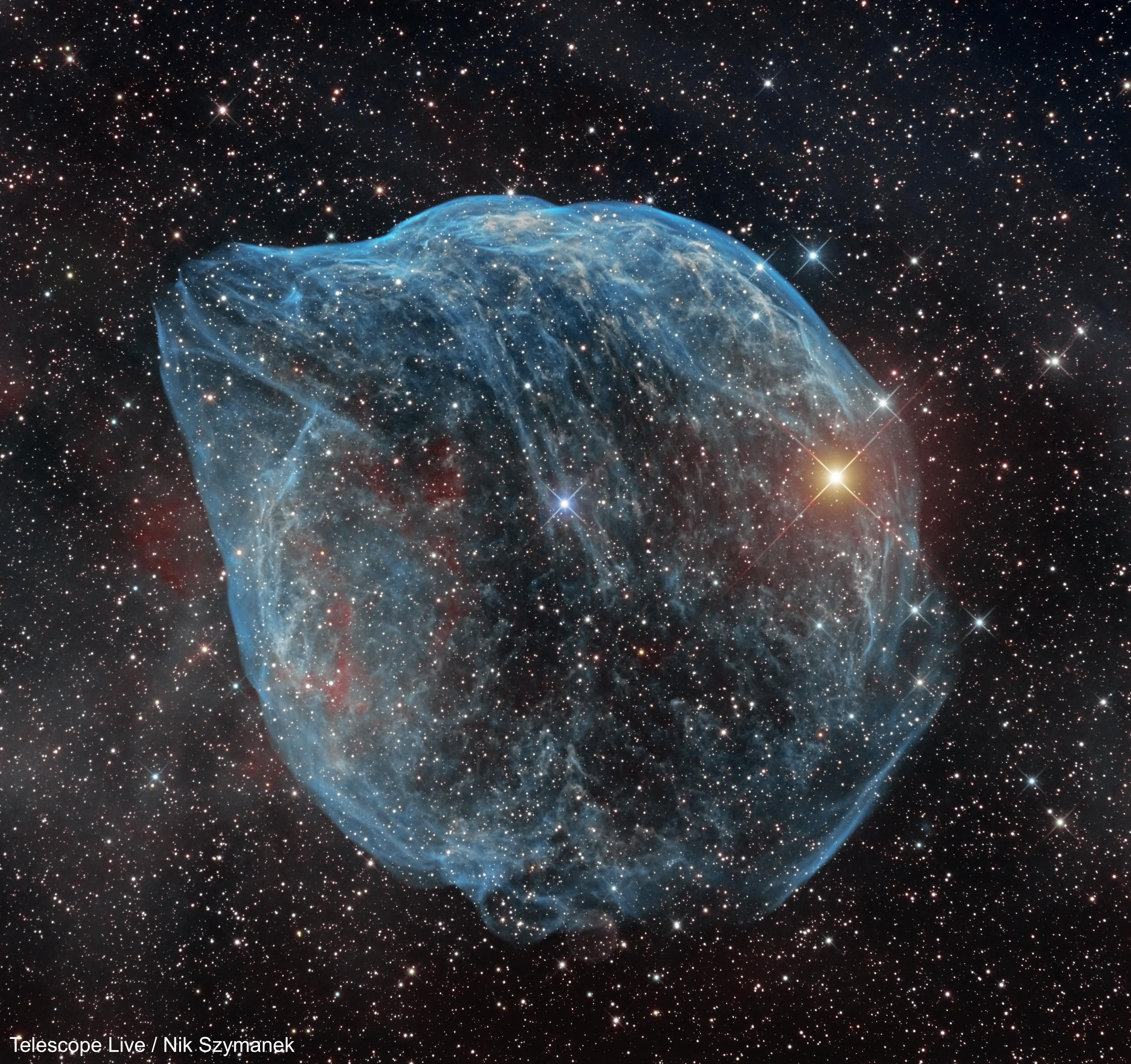 SH2-308: The Dolphin-Head Nebula