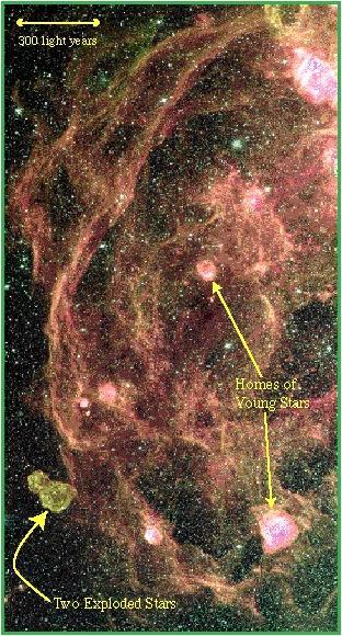 Laboratorios estelares en la LMC