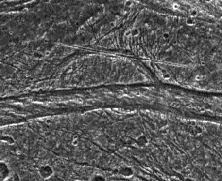 Misteriosos rasgos en Ganímedes