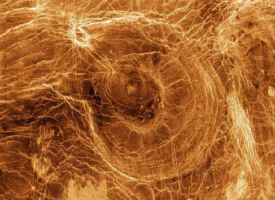 Aracnoides sobre Venus