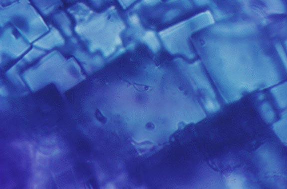 Se encuentra agua en una roca espacial