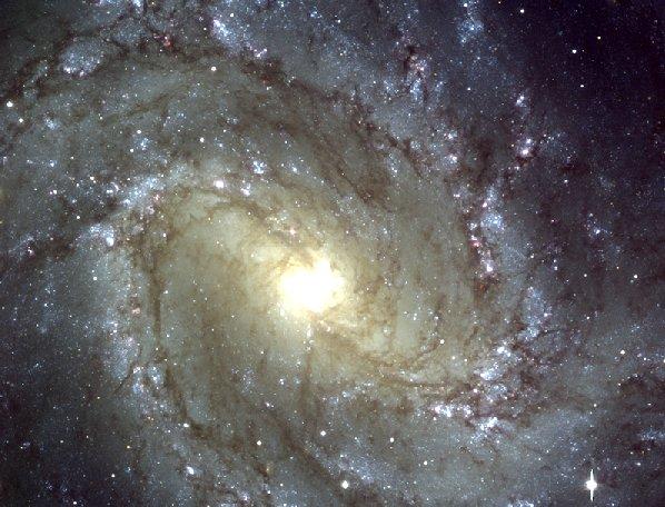 M83: La Galaxia Molinillo Sureño por el VLT