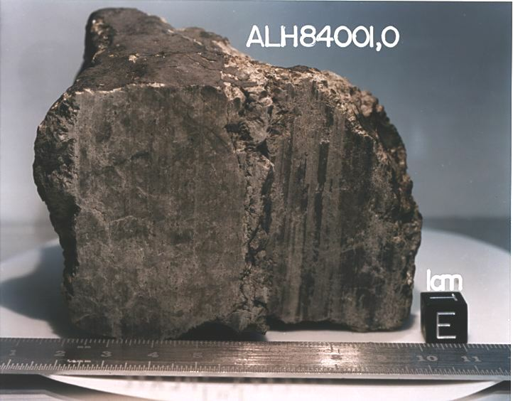 August 17, 1996 - A Meteorite From Mars
