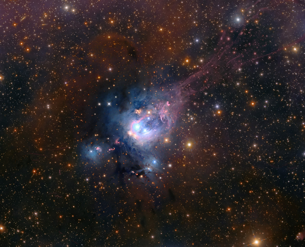 Young Suns of NGC 7129 -  Young suns still lie